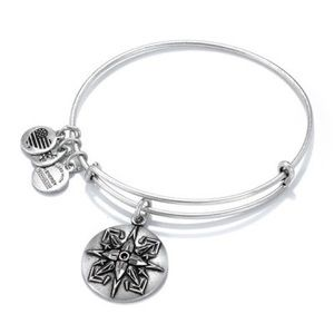 Retired Silver Alex and Ani Healing Love Bracelet